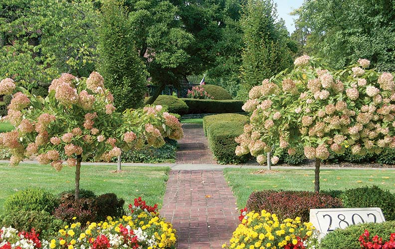 A heightened sense of passage comes from symmetrical arrangements here and at the front entry.