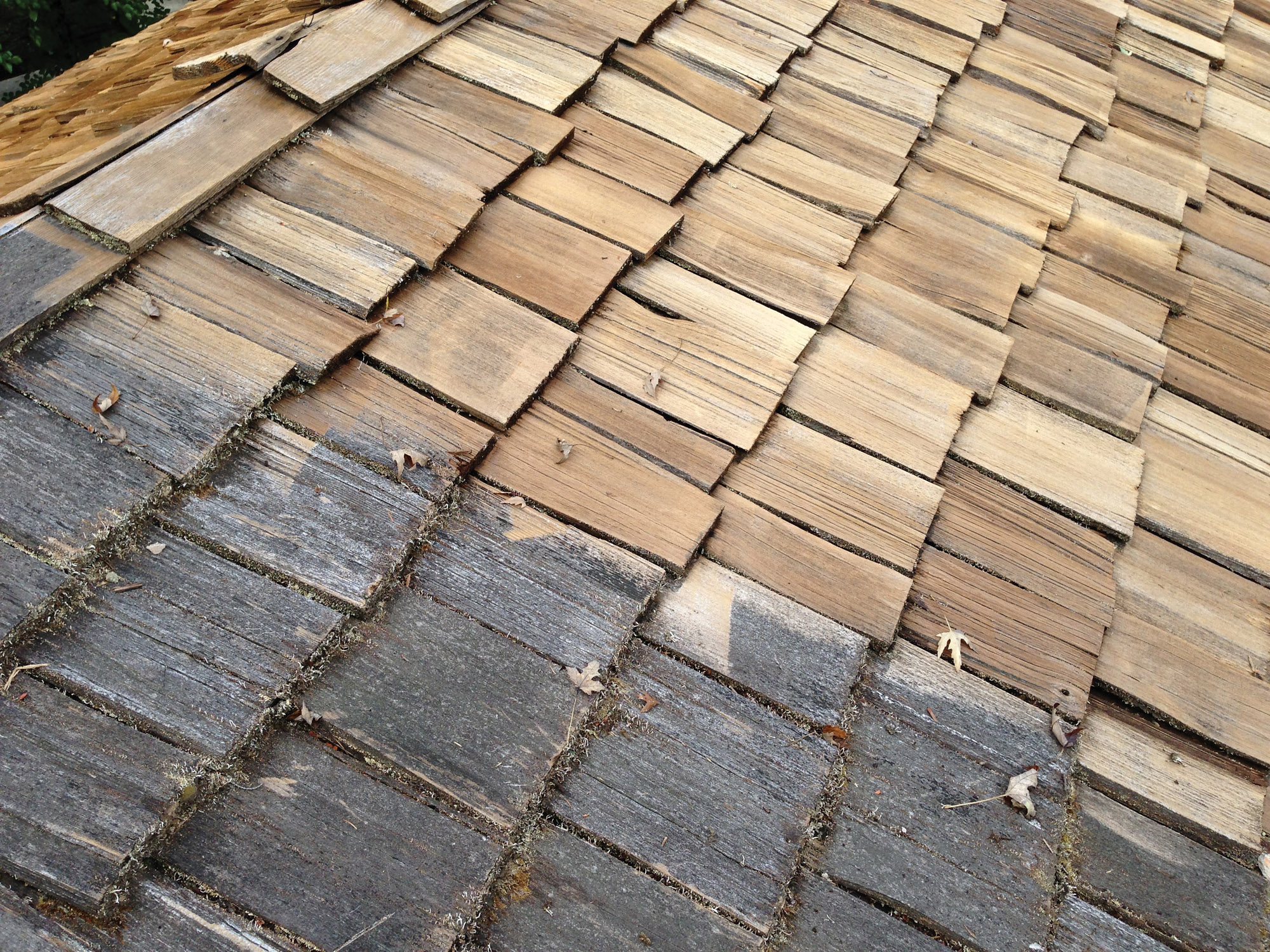 shingles with trapped moisture