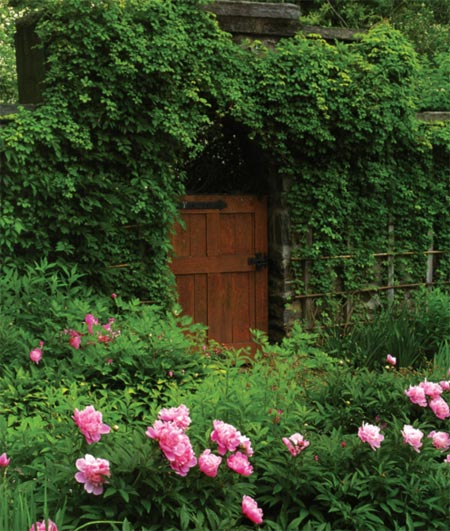 The Arts & Crafts-style garden gate and trellis are covered in Akebia quintata, with peonies in the foreground.