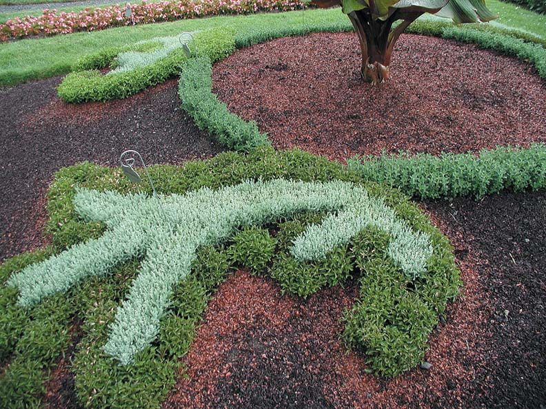 The Right Mulch Can Complement The Landscaping. Here, The Unusual,  Fine Textured