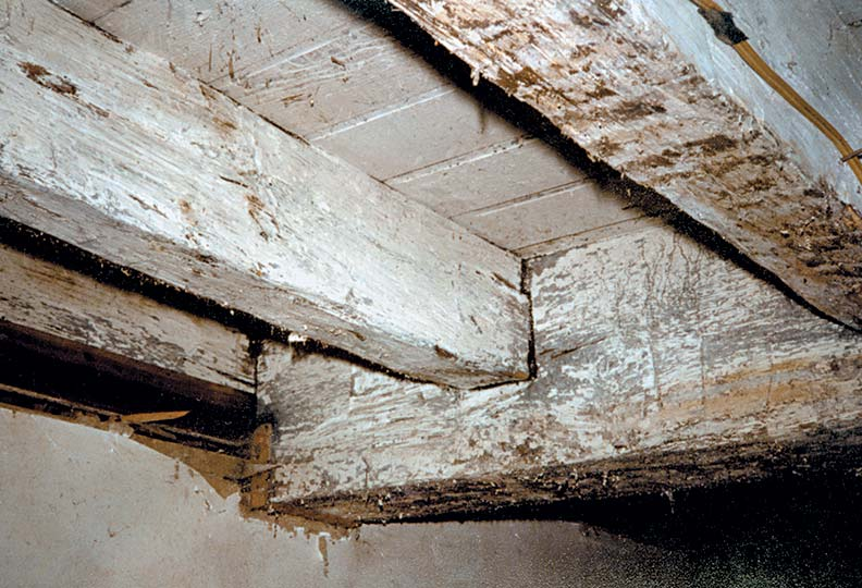 Bob scrubbed the whitewash off of the family room's beams with a Brillo pad.