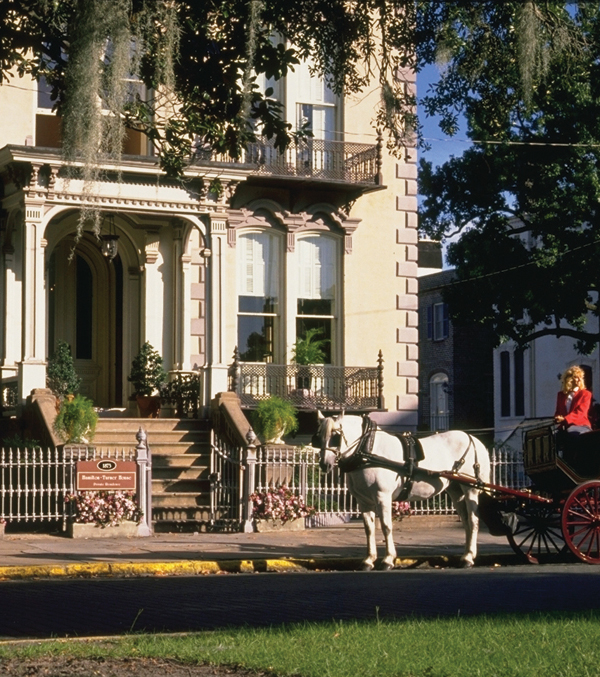 Carriage tours fit Savannah's wide boulevards and slow pace.
