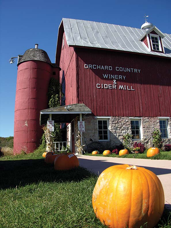 Cider in autumn. (Photo: Courtesy of DoorCounty.com)