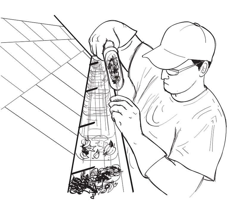 One-Day Project: Clean Your Gutters