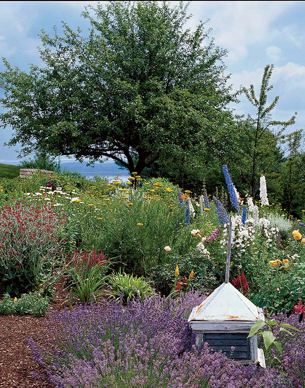 Delphiniums and phlox, daisies, foxgloves, lupines and roses are part of an old-fashioned garden surrounding a colonial-era house in coastal Maine.