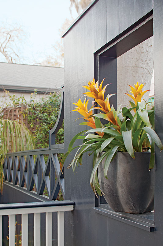 Container plants on the terrace rail add color accents.