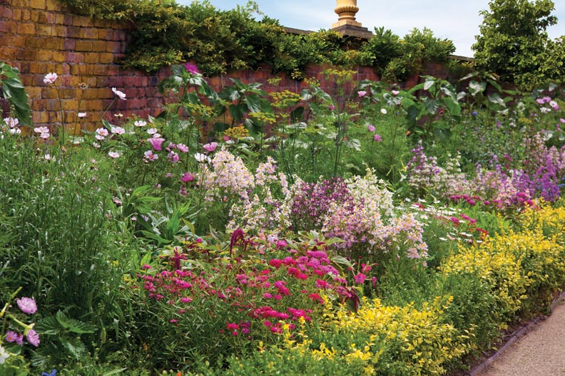Achieving the maximum results in a cutting garden requires planning and patience.