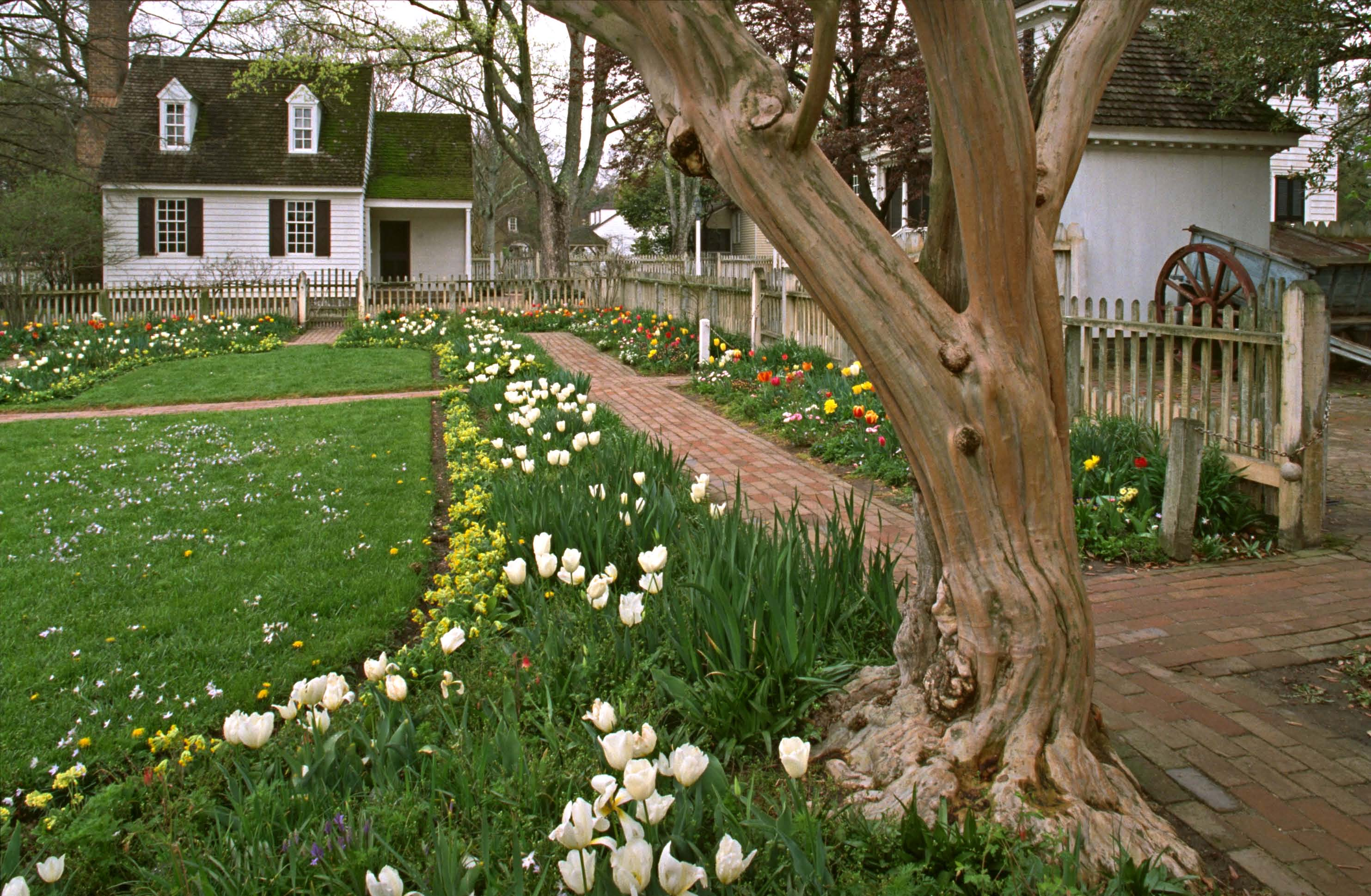 In the Taliaferro-Cole garden, straight brick paths link buildings. (Photo: Courtesy CWF)