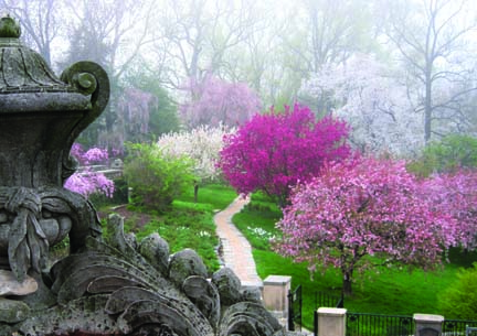 The garden at Dumbarton Oaks is renowned for its blend of naturalism and formal elements, such as this view from the terrace overloooking Crabapple Hill. (Photo: Dumbarton Oaks)