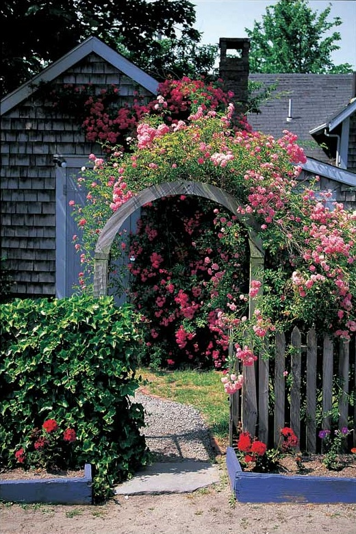 Frame the entry path to your vintage cottage with an arbor overflowing with climbing roses. A picket fence can help, too.