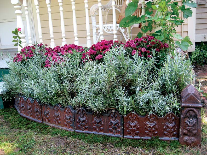 Terracotta edging tiles help define a diminutive garden bed.