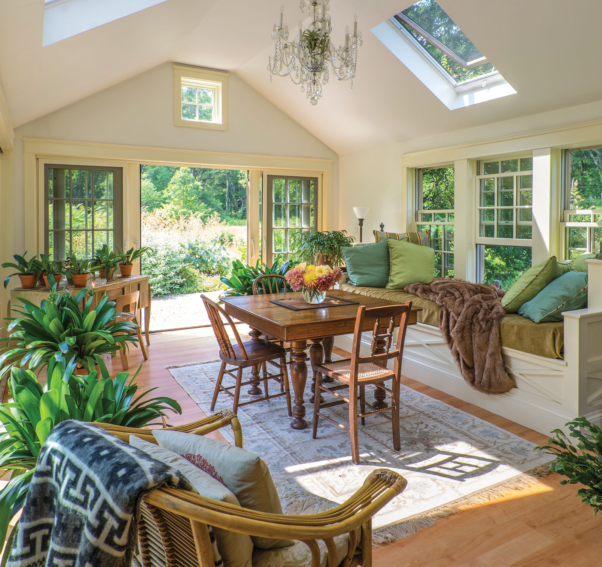 light-filled sunroom with hardy plants