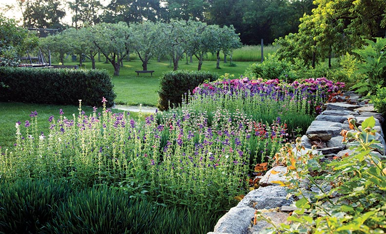 Incorporating an orchard into your garden setting is no small task.
