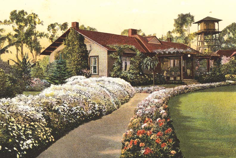 Mixed borders lining walkways—along with plantings that merged the lawn and foundation, and moveable pots on patios—were the hallmarks of Arts & Crafts landscapes.