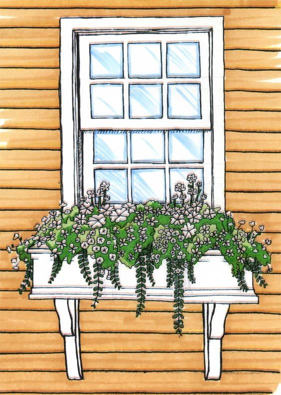 Install a window box