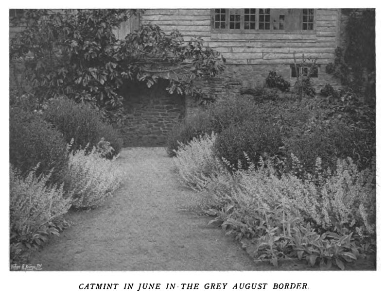 Jekyll also demonstrates how certain groupings change throughout the season. Here, a flower border is subdued in June.