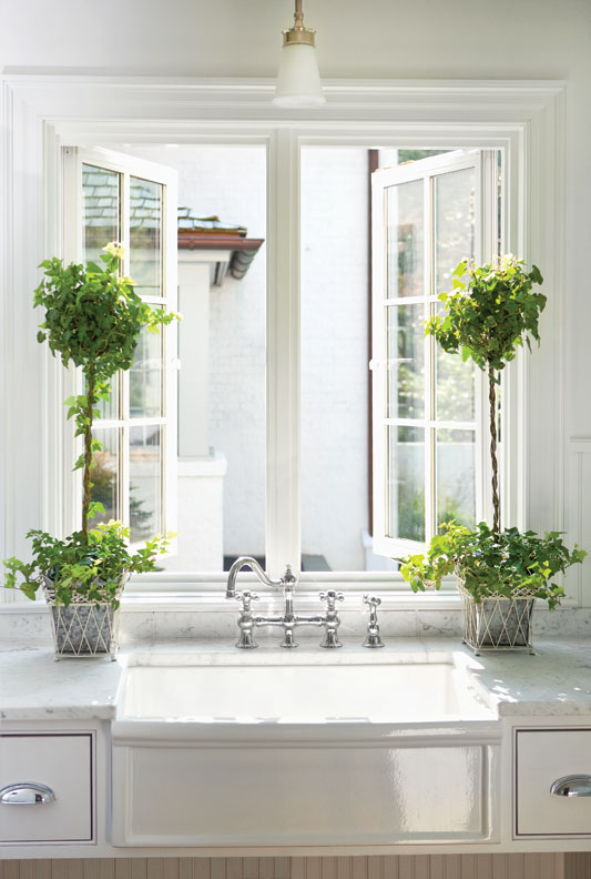 For The Kitchen 7 Best Houseplants For The Kitchen Old House Restoration