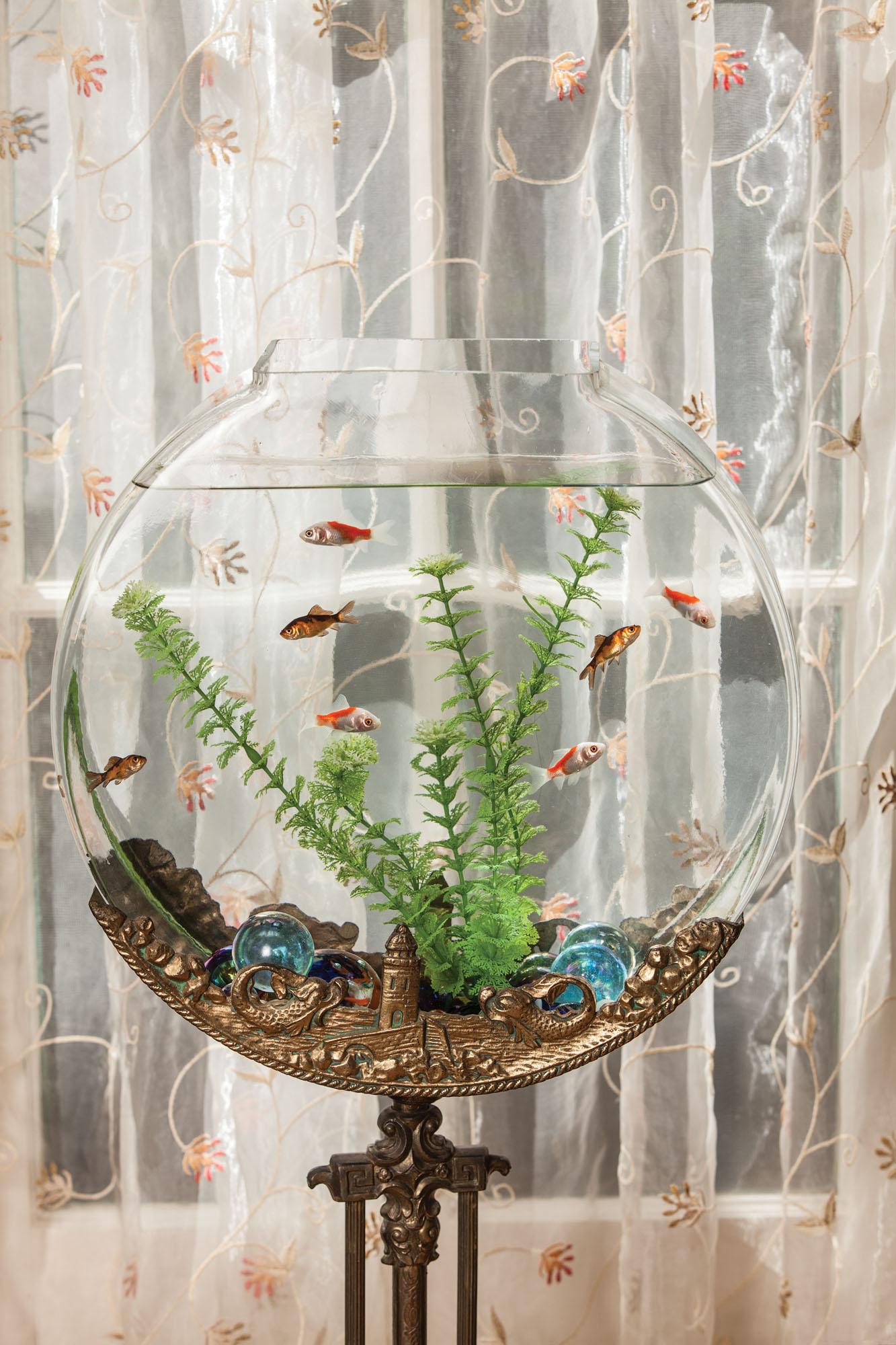 ca. 1930 stand aquarium