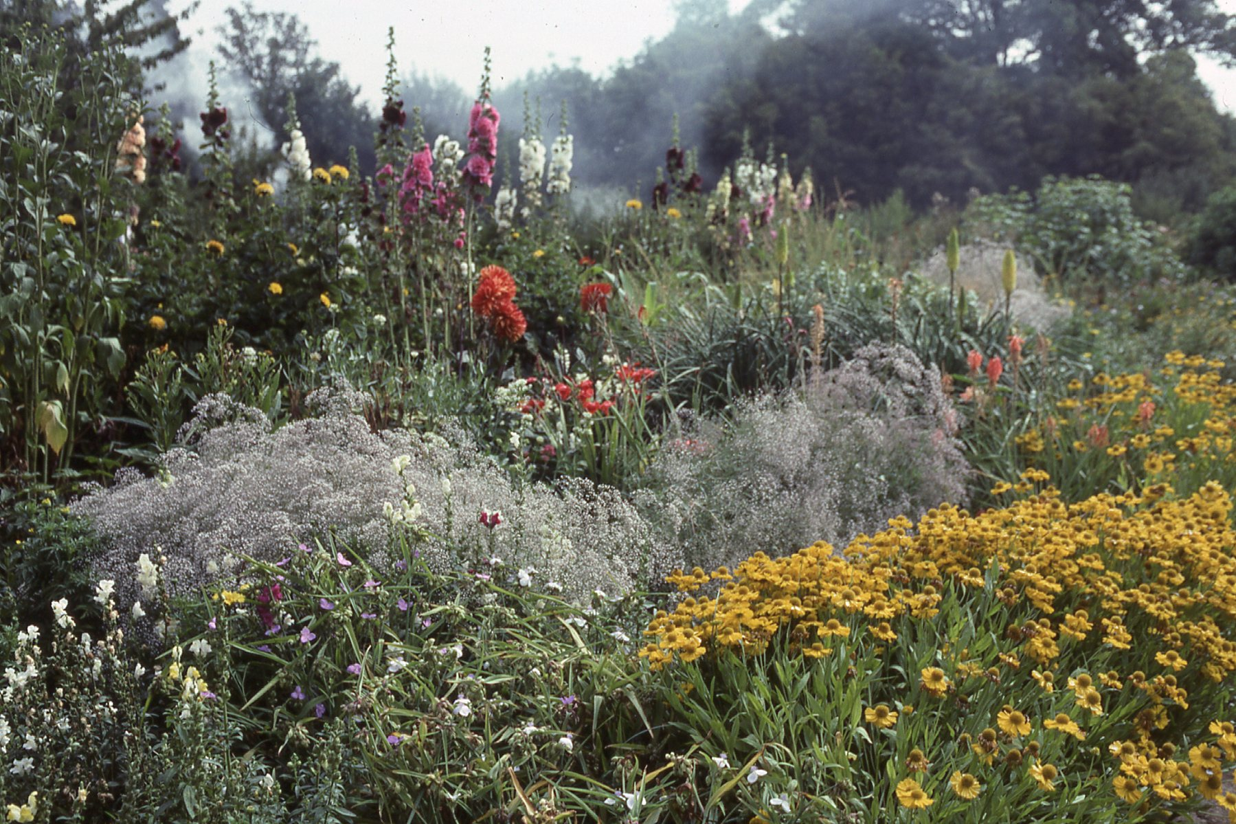 In a small private garden in Hampshire, Gertrude Jekyll created a wildflower border that embraces the theory of naturalism in Arts & Crafts garden design.