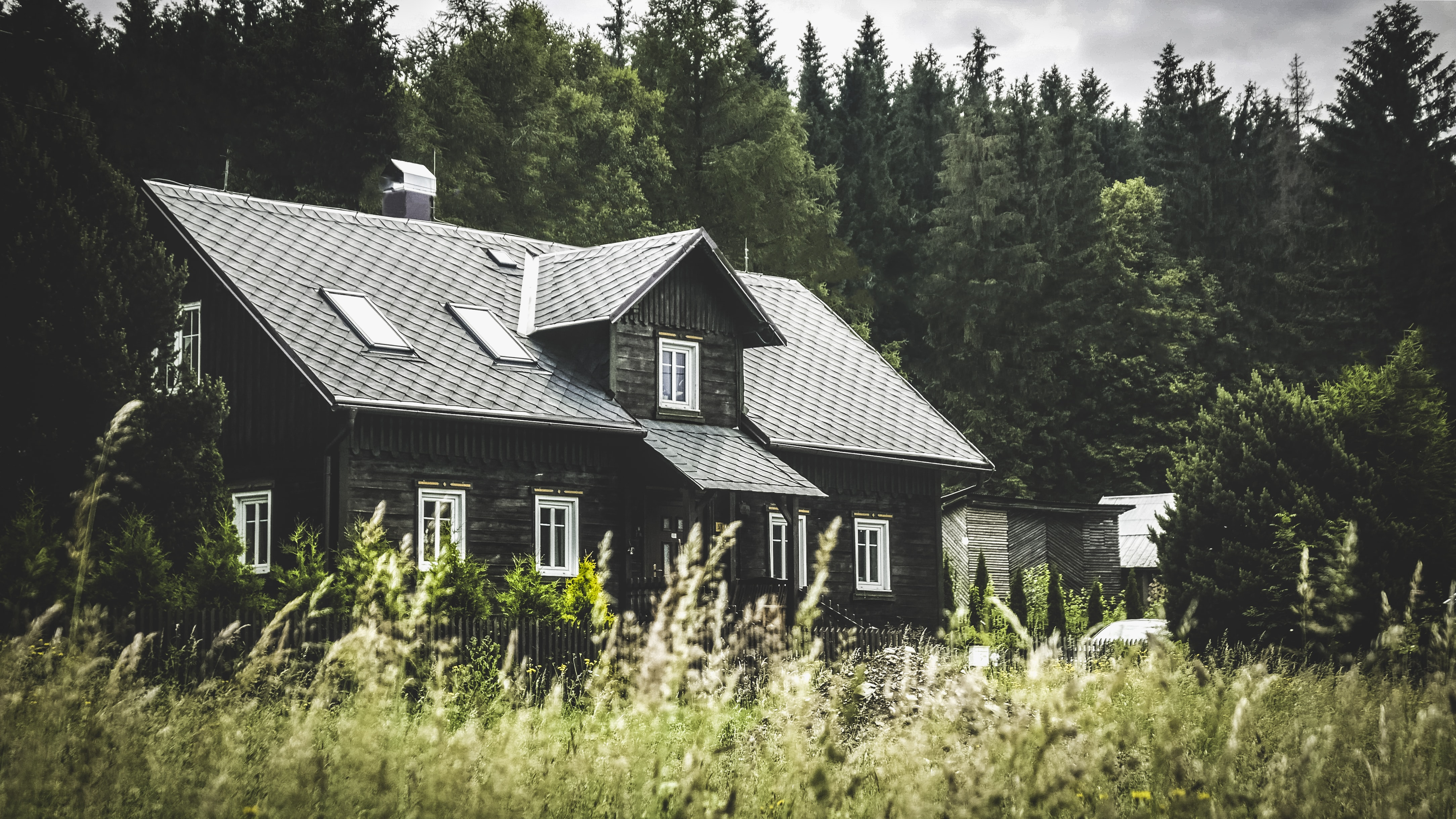 old house in woods