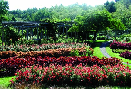The garden's red portions mix bright and earthy tones; transitions between beds are smoothed by the flowers' proximity on the color spectrum.