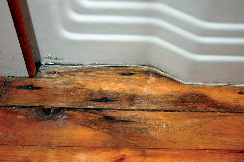 How To Get Rid Of Mold Old House