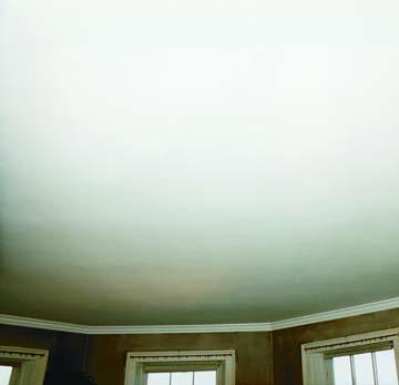 Restored plaster ceiling