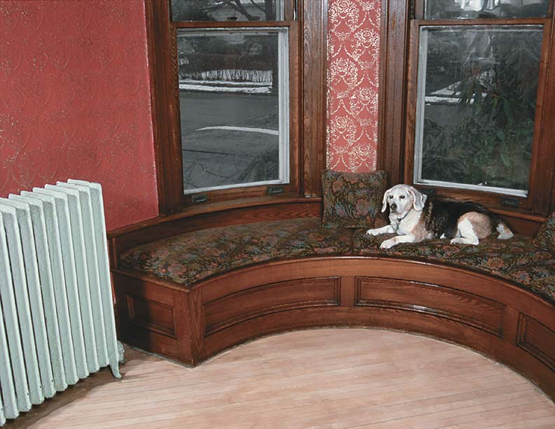 Gypsy, the canine queen of three dogs in the house, poses regally on the window seat of the tower room.
