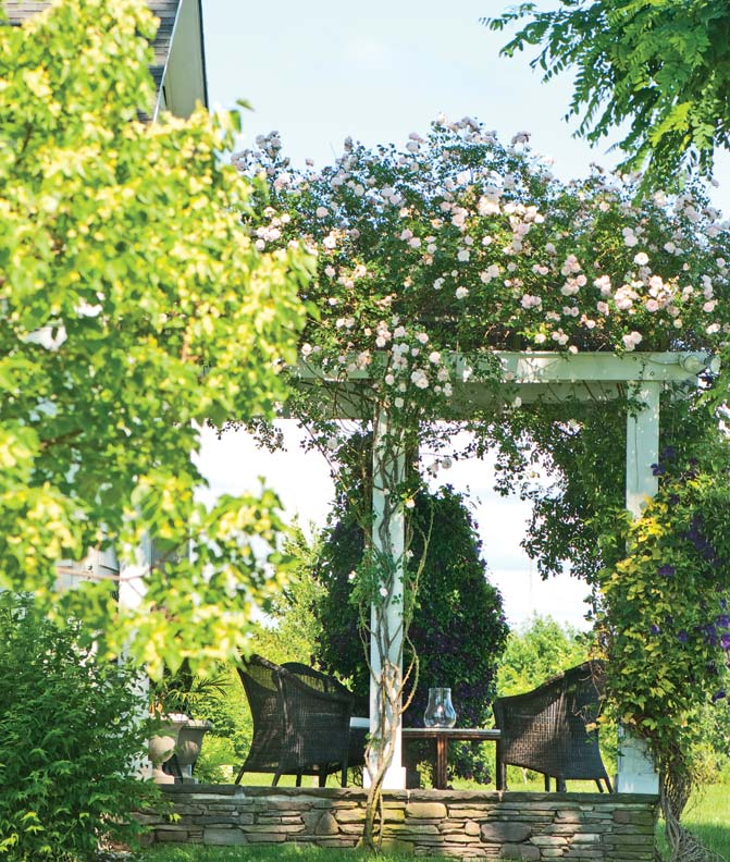 The pergola-porch may have advantages over a roofed porch. During winter, sunlight can get through as deciduous vines die back; in summer, overgrown rafters provide shade.