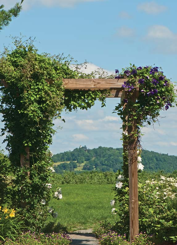 This tall arbor covered in clematis frames the view of Olana.