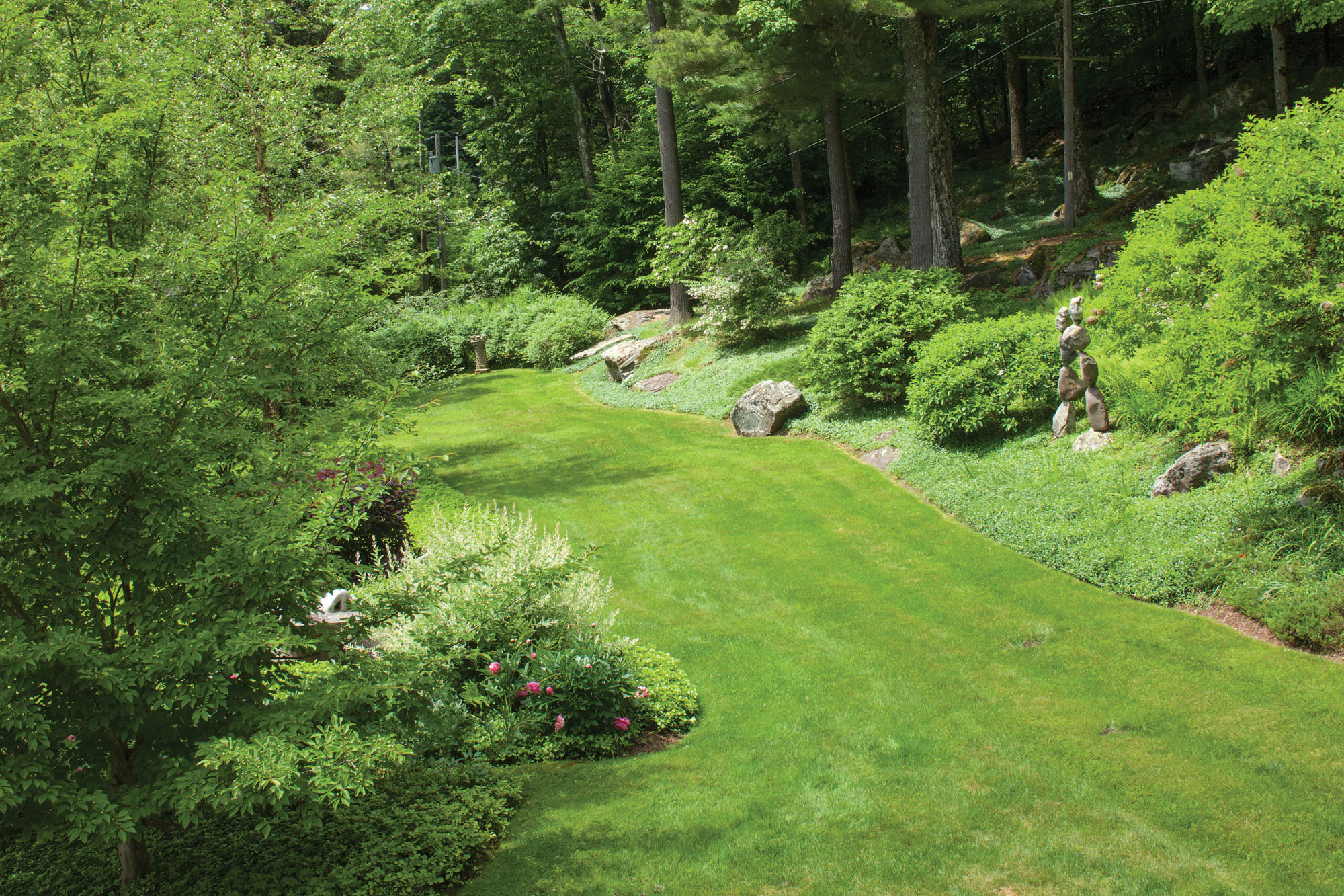 Ground Covers and Underplanting