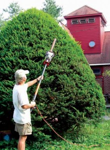 Modern tools, like these pole hedge shears, make pruning and caring for shrubs around old houses easier than ever.