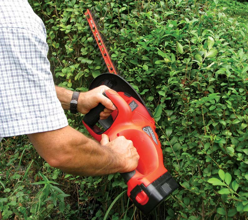 10 Must-Have Pruning Tools - Old House Journal Magazine
