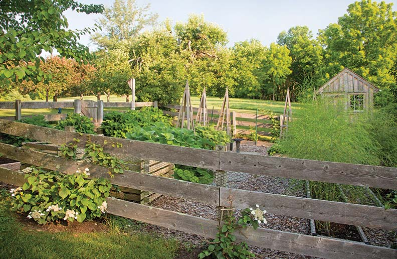 Your vegetable garden needs to be placed in an area that will receive full sun for eight hours.