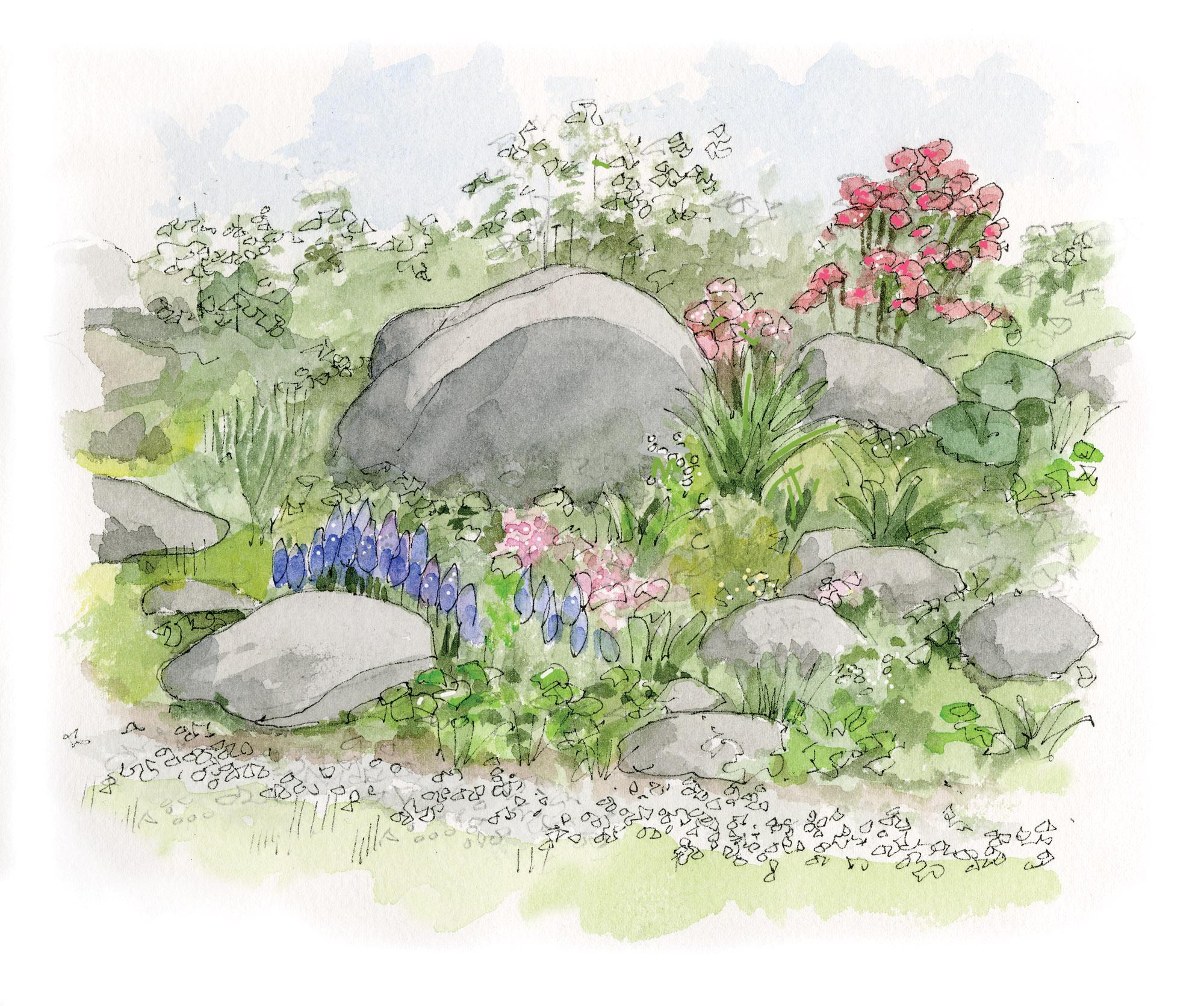 DIY Rock Garden