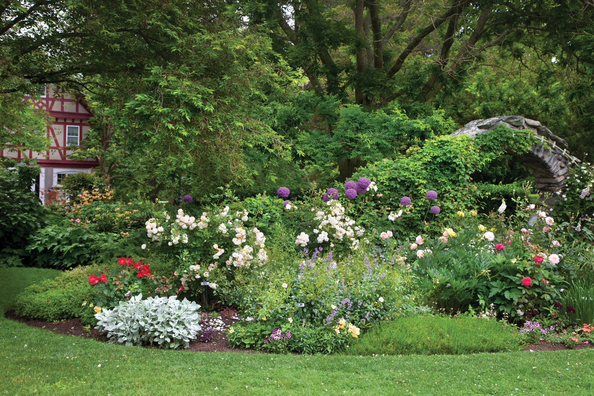 rose garden, perennials, Blithewold