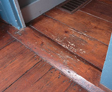 Finish wear in high-traffic areas exposes the wood fibers— unattractive and damaging to the actual flooring. Spot finish repairs may be practical until it is time for a total refinishing.