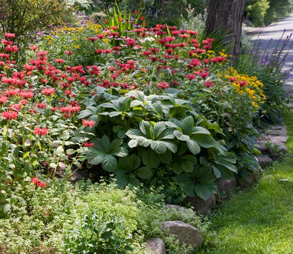 Swaths of bee balm and black-eyed Susans lend a naturalized look.