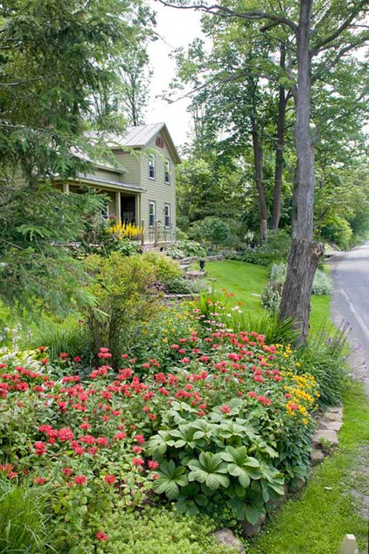 The 1880 house has great curb appeal, as most of the gardening action happens out front. Swaths of naturalized black-eyed Susans (Rudbeckia) and bee balm (Monarda) sway above sweet woodruff (Galium).