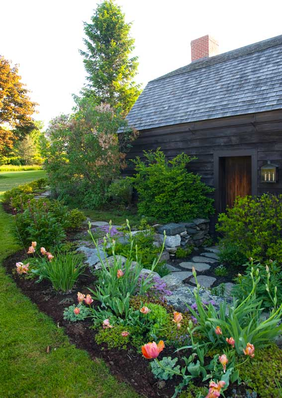 "The gambrel-roofed Skidmore House (1750) was ""bought for parts,"" and the shell became a garage and garden shed. The dooryard garden blossoms with parrot tulips and iris in spring."