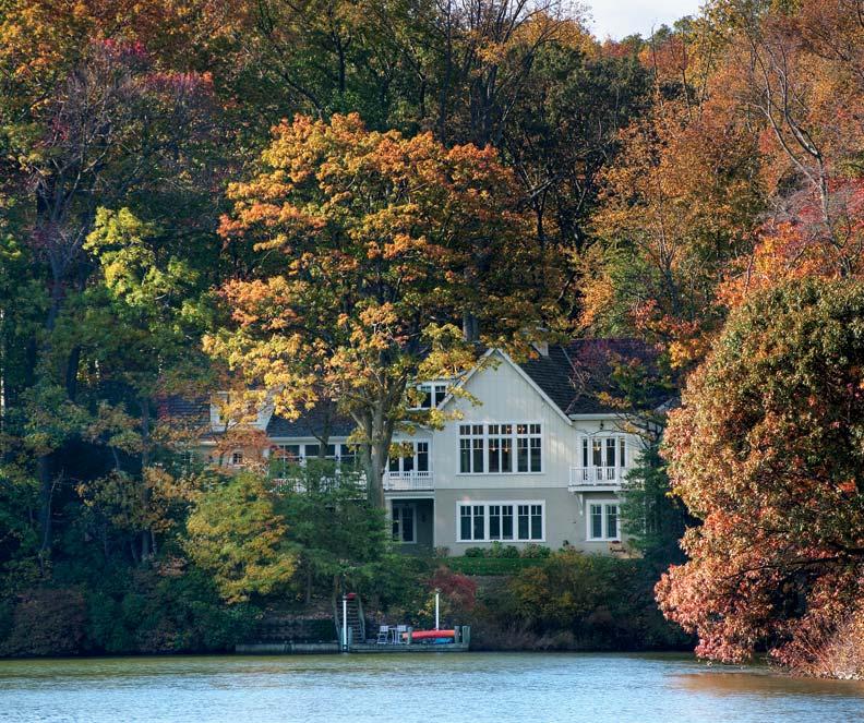The house nestles into its woodland setting.