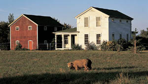 The new Greek Revival style house on this working farm in Michigan draws inspiration from the region's early houses.