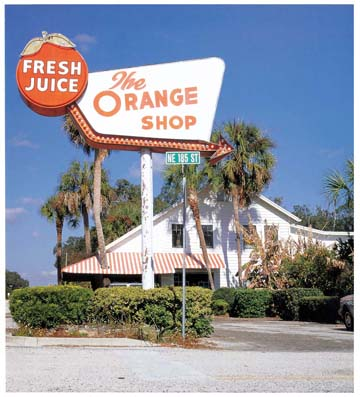 Vintage roadside citrus shop, Citra