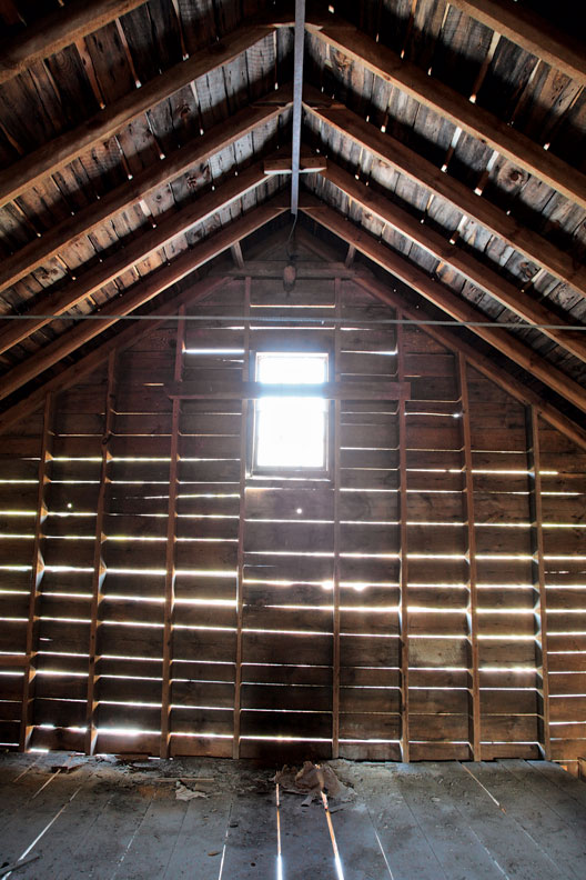 Timber framing, using traditional joinery, creates a lasting structure.