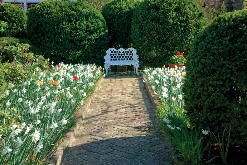 Mingling tulips and daffodils line an allée in a quiet corner of the garden. From spring through fall, the garden blooms with annuals maintained by the Garden Club of Virginia.
